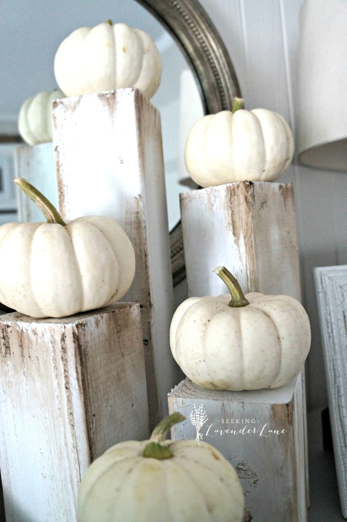 White Pumpkins on Rustic Wood