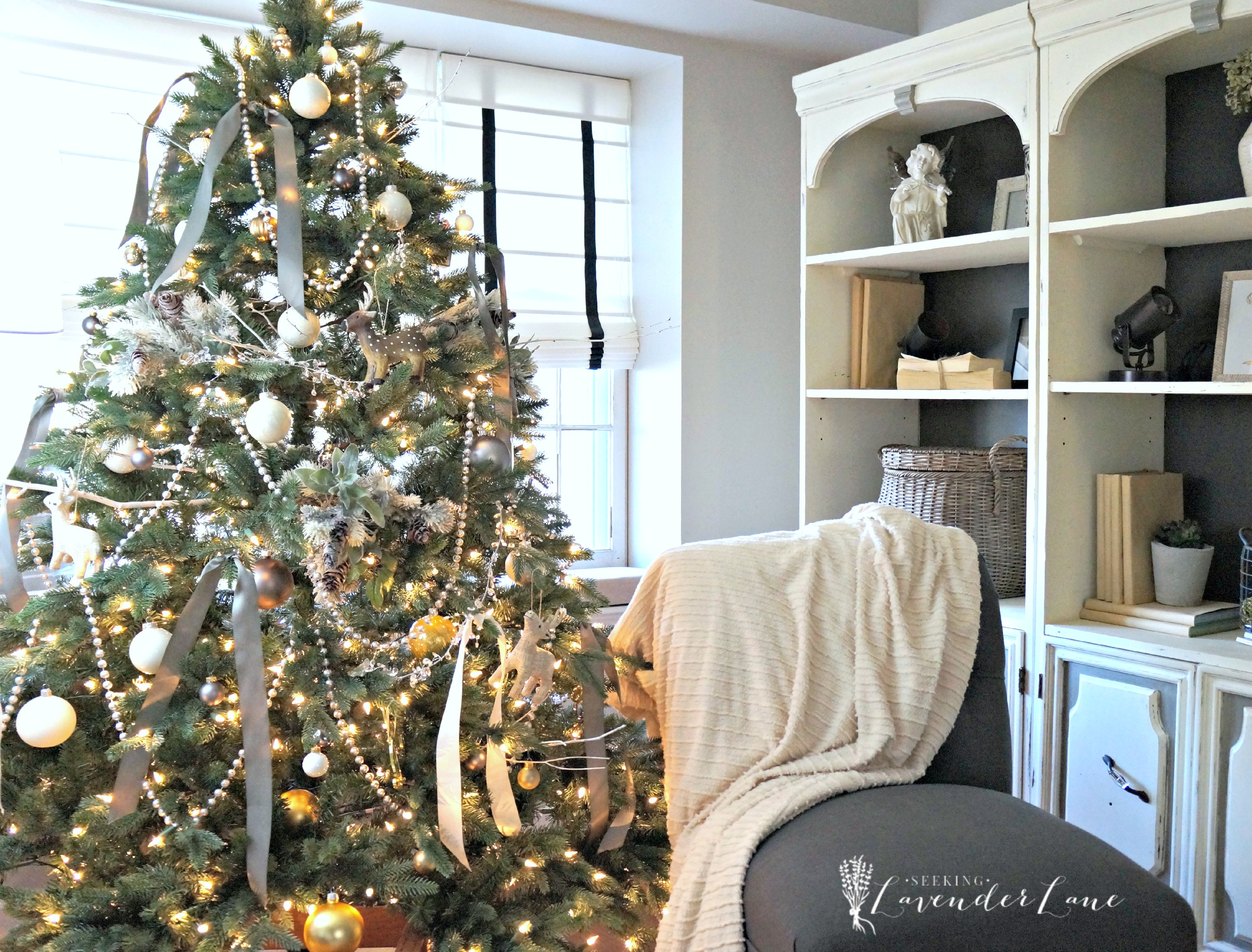 28 Best Lasting Christmas Trees Type Christmas Gift