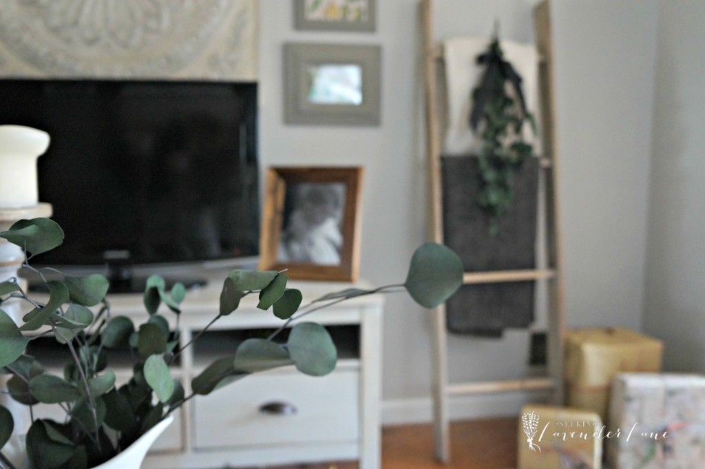 Eucalyptus Christmas Decor