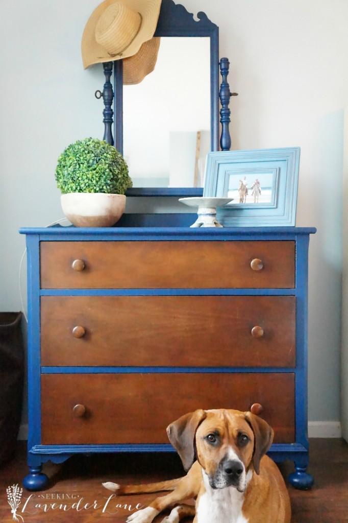 blue dresser 5