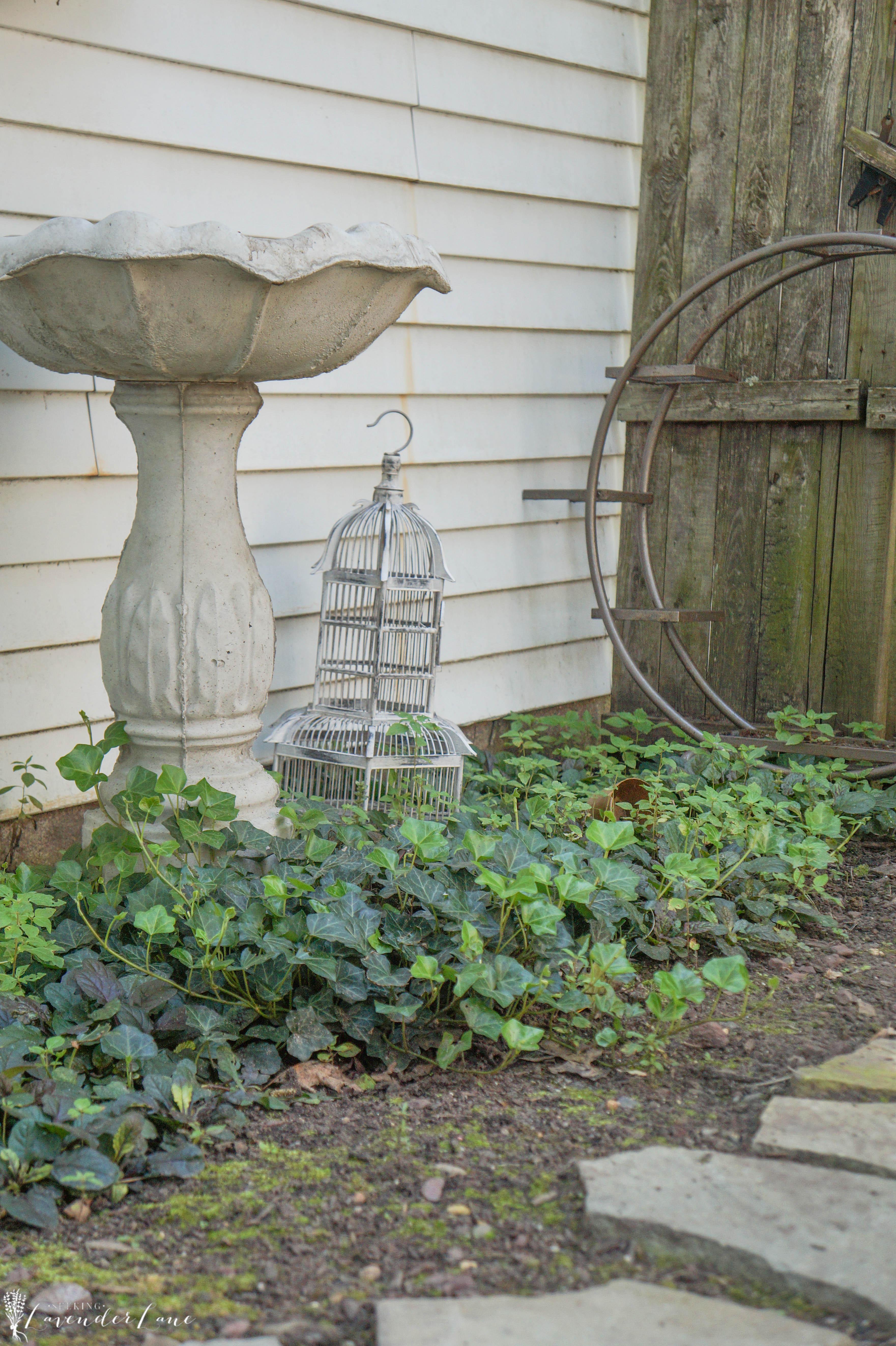 pictures of vintage herb gardens | Vintage Herb Garden - Seeking Lavendar Lane